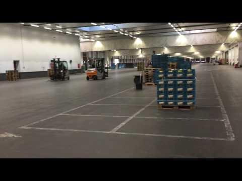All go at BelOrta's distrubition facility in Belgium