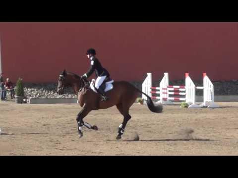 Barbara Flynn; Caber Farm Horse Trials; August 2016