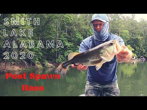 Smith Lake Alabama 2020, Post Spawn Bass