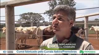 Reportagem Globo Rural sobre Curral Anti Stress
