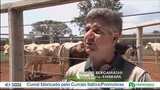 Reportagem Globo Rural sobre Curral Anti Stress