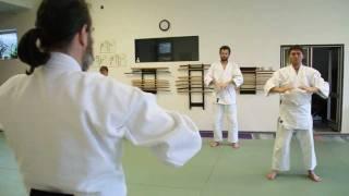 Dojo na cestě - Aikido dospělí