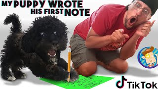 Our Puppy Wrote his First NOTE & our TIK TOK  had a BIG FAIL (FV Family Vlog)