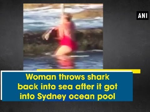 Woman throws shark back into sea after it got into Sydney ocean pool - ANI News