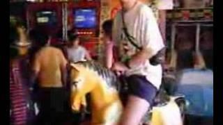 South Beach Arcade Horse in Staten Island NY