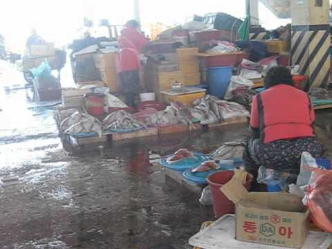 Purchase In The Jagaichi Fish Market Near The Harbour