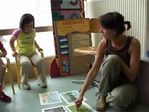 Multilingual education in Brussels, Belgium