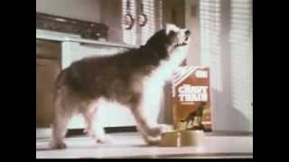 VINTAGE MID 60s GRAVY TRAIN COMMERCIAL - DOG DREAMING ABOUT BEING JUST LIKE RIN TIN TIN