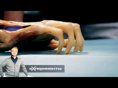 EXперименты. Ловкость рук. Фильм 1