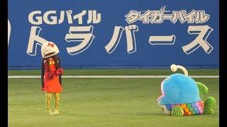 サムネ…トラバースとなっておりますが阪神タイガースのバースではありま...