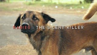 Penyakit rabies adalah sejenis penyakit yang disebabkan oleh jangkitan Lyssavirus dari haiwan sepert.