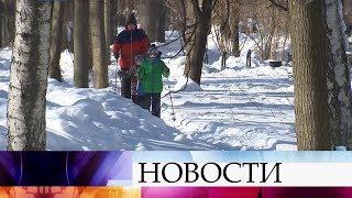 Ночь на 23 февраля в Москве стала самой холодной за эту зиму.