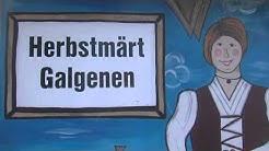 1A.TV - Gemeinde Galgenen (Video)