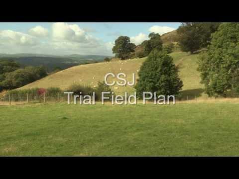 CSJ Sheepdog Trial Field