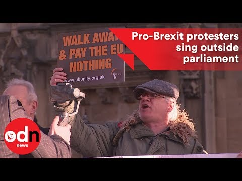 'Bye bye EU': Pro-Brexit protesters sing outside parliament