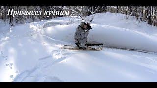 Промысел куницы// Обход путика Urnis Fishing//Hiking in the hunting area