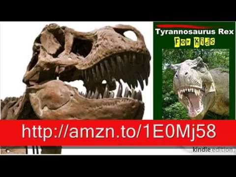 Tyrannosaurus Rex's Facts – Tyrannosaurus Rex For Kids – Amazing Animal Books For Young Readers