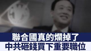 羞恥聯盟再擴大!中共賄賂聯合國成員 天價買下要職|新唐人亞太電視|20190805