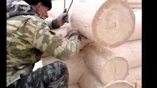 Производство срубов компании ecodom-viga ru
