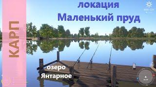 Русская рыбалка 4 - озеро Янтарное - Отдых на карпах в пруду