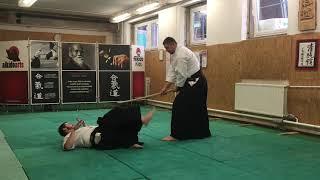 Tachi dori yokomen uchi kirikaeshi shihonage, kotegaeshi, kokyunage