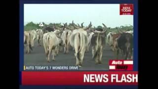 Auto Today: Road Trip Across 7 Wonders Of India | Dholavira | Part 6