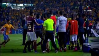 жесткая драка в чемпионате мексики в матче тигрес америка 2016