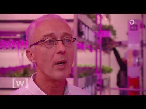 Indoor Farming - Planet Wissen