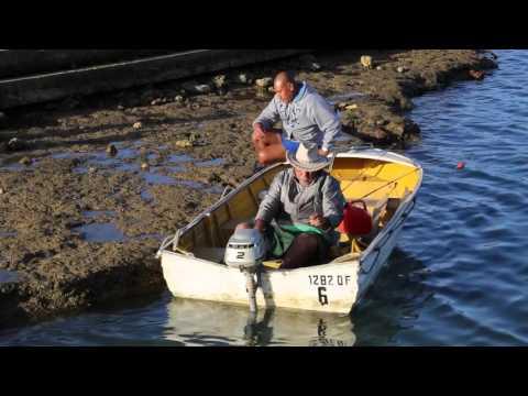 Iles Cook Rarotonga Avarua Rencontre avec des pêcheurs / Cook islands Meet a fisher men