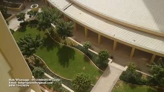 3 bedroom apartment - for Rent - JBR Dubai