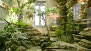 Gambar cover Make Oriental Atmosphere With Indoor Japanese Garden