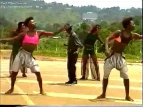 opic zorro - Nga Bindere