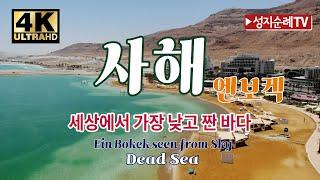 [성지순례TV] 4K 사해 엔보켁 4K Dead Sea…