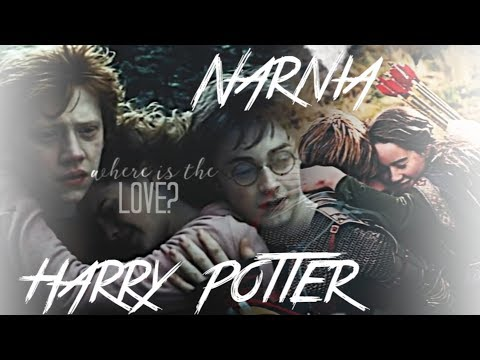 Harry Potter / Narnia || Where is the Love
