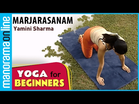 Marjarasanam | Yoga for beginners by Yamini Sharma | Health Benefits | Manorama Online