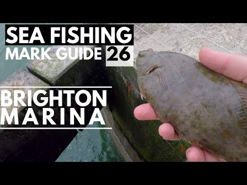 Sea Fishing Mark Guide To Brighton Marina