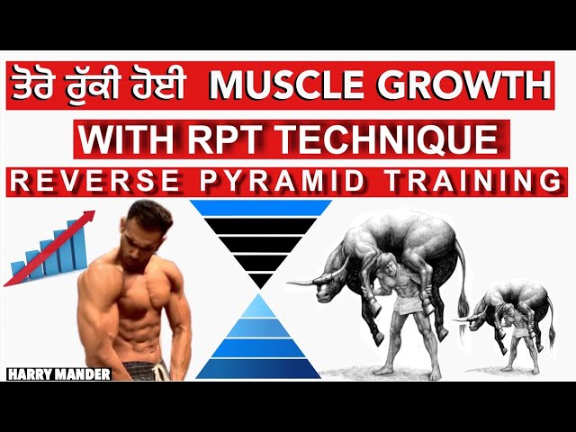 Grow Muscle With Reverse Pyramid Training TECHNIQUE!! HYPERTROPHY  - Harry Mander
