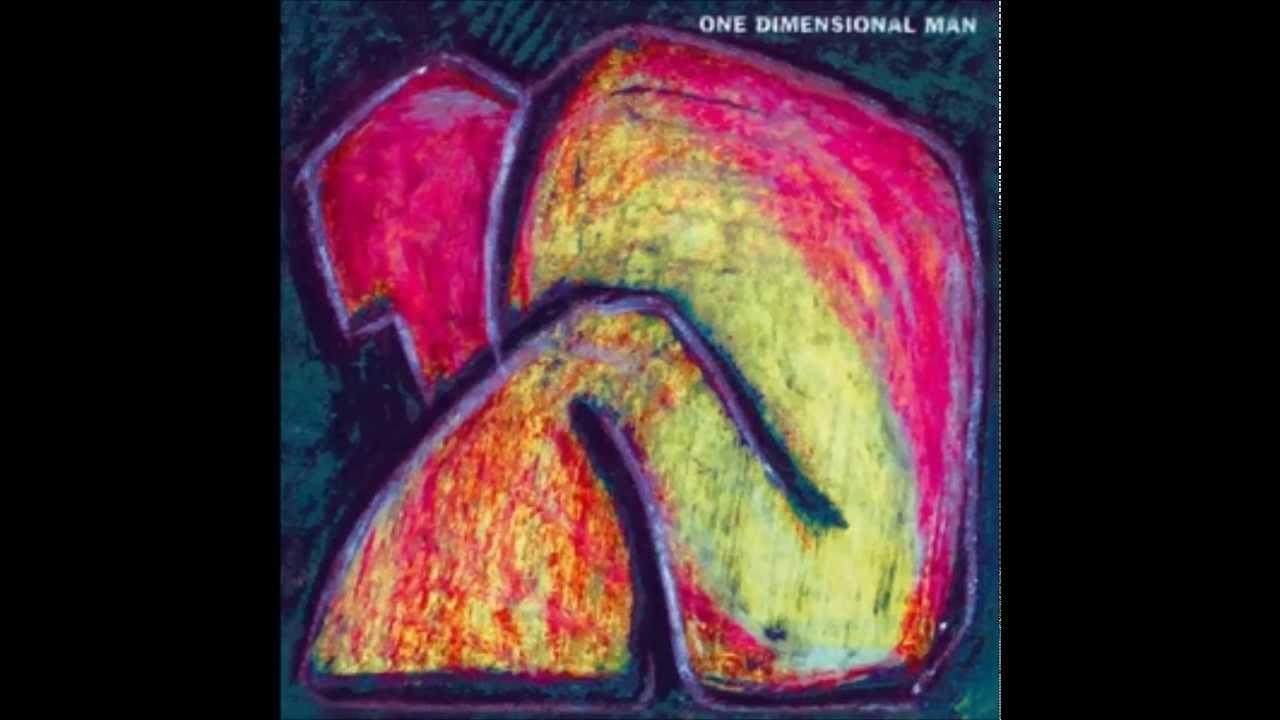 One Dimensional Man PDF