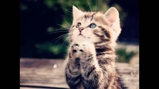 Я буду за тебя молиться