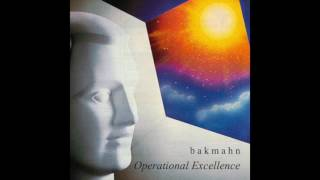 b a k m a h n operational excellence full album
