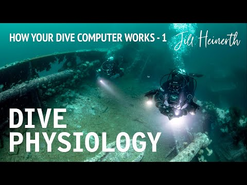 How Your Dive Computer Works, and How to Plan Your Scuba Dives | Diving Physiology Part 1