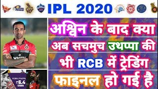 IPL 2020 - After Ashwin Is Uthappa Is The Next Trade To RCB ? | IPL Auction | MY Cricket Production
