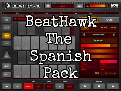 BEATHAWK The Spanish Gypsy Sound Pack Demo for the iPad