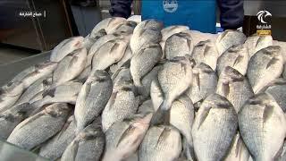 برنامج صباح الشارقة - أسعار الأسماك في سوق الجبيل 25-06-2020