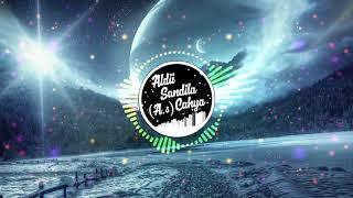dj-terbaru-senorita-fullbass-2019-remix-tiktok
