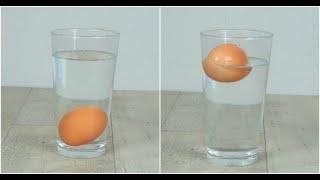 Come capire se le uova sono fresche