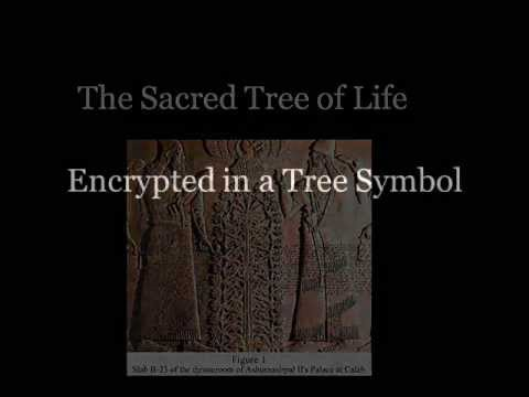 The Assyrian Tree of Life