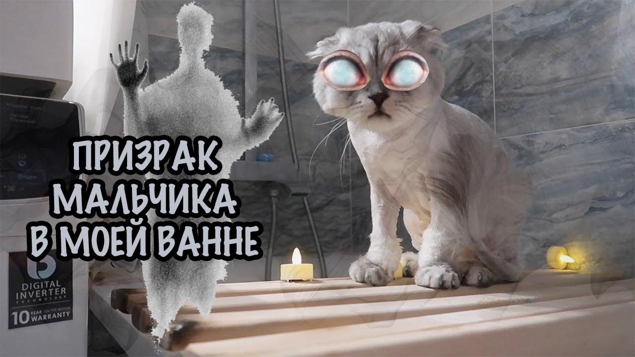 КОТ КЕВИН И ПРИЗРАК МАЛЬЧИКА В ВАННОЙ / НЕ СМОТРИ НА НОЧЬ!