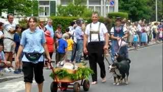 スイス、Lachenで行われたJodlerfest(ヨーデルフェスト)のパレード Ap...