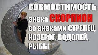 видео Совместимость Скорпион и Стрелец